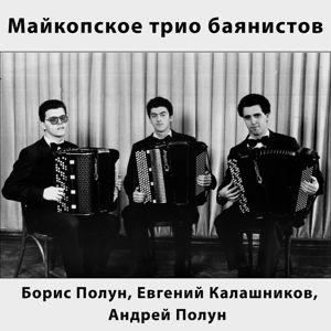 Майкопское трио баянистов
